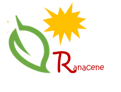 Ranacene Utilities & Insights Limited